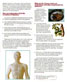 Acupuncture Herbal Magazine Health News of The Tole Acupuncture Herbal Treatment Cure
